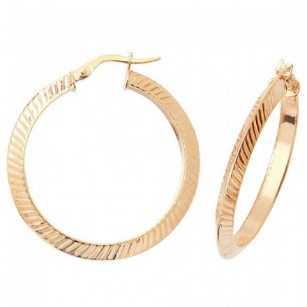 Just Gold Earrings -9Ct Earrings, ER879